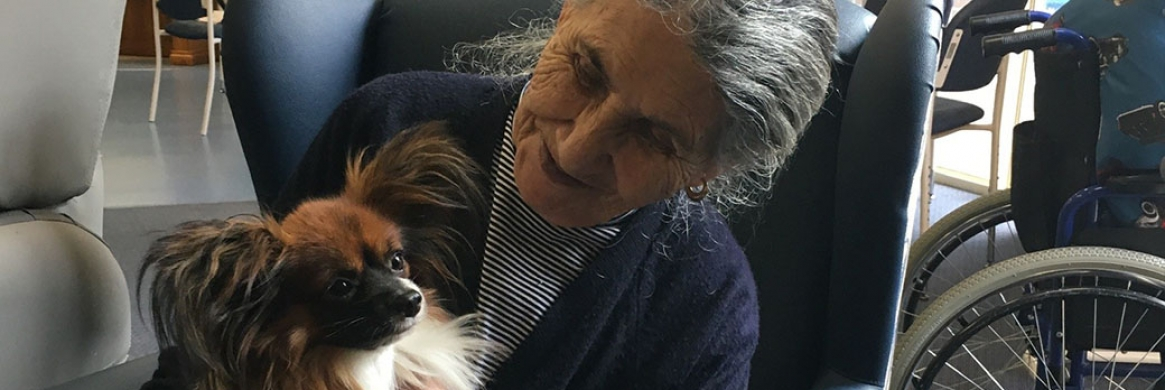 Dogs delight at Providence aged care